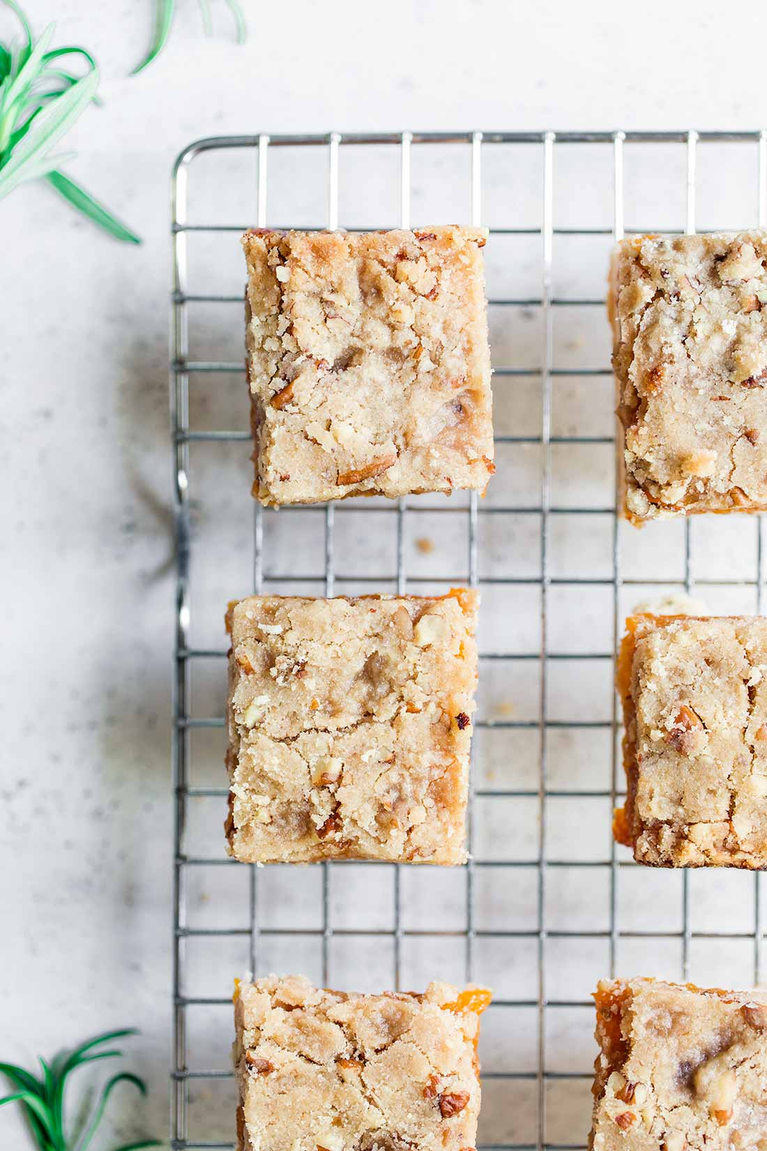 Rosemary Apricot Bars Recipe shot overhead