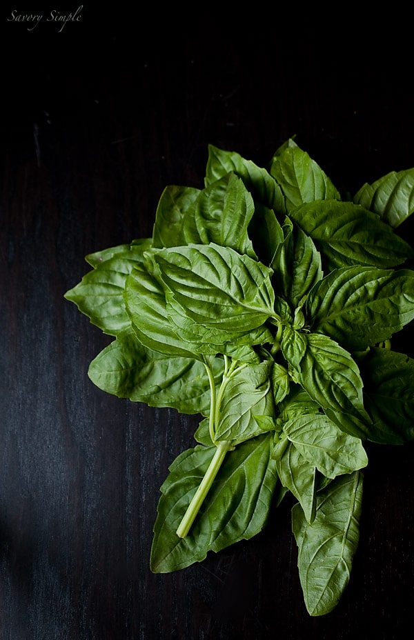 Basil Peppercorn Vinaigrette ~ Savory Simple ~ www.savorysimple.net