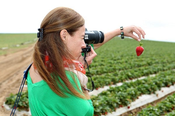 California Strawberries Farm & Culinary Tour ~ Savory Simple