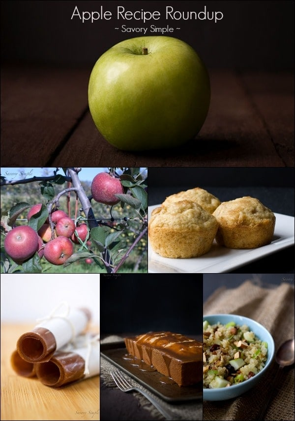 Apple Recipe Roundup - Savory Simple