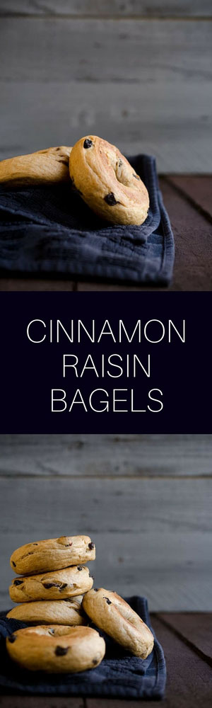 These are the best cinnamon raisin bagels you will ever make at home!