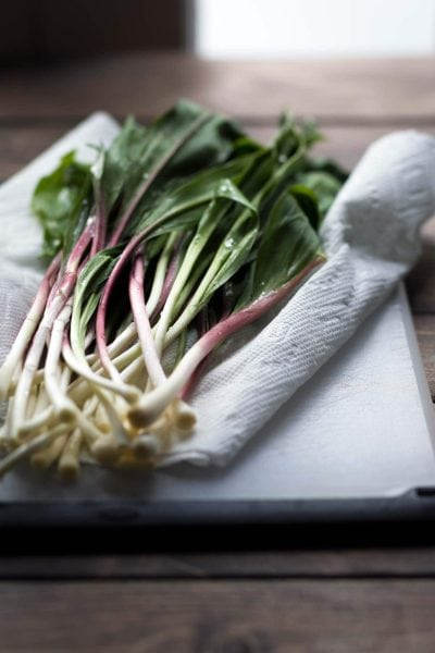 What are ramps? A photo of ramps.