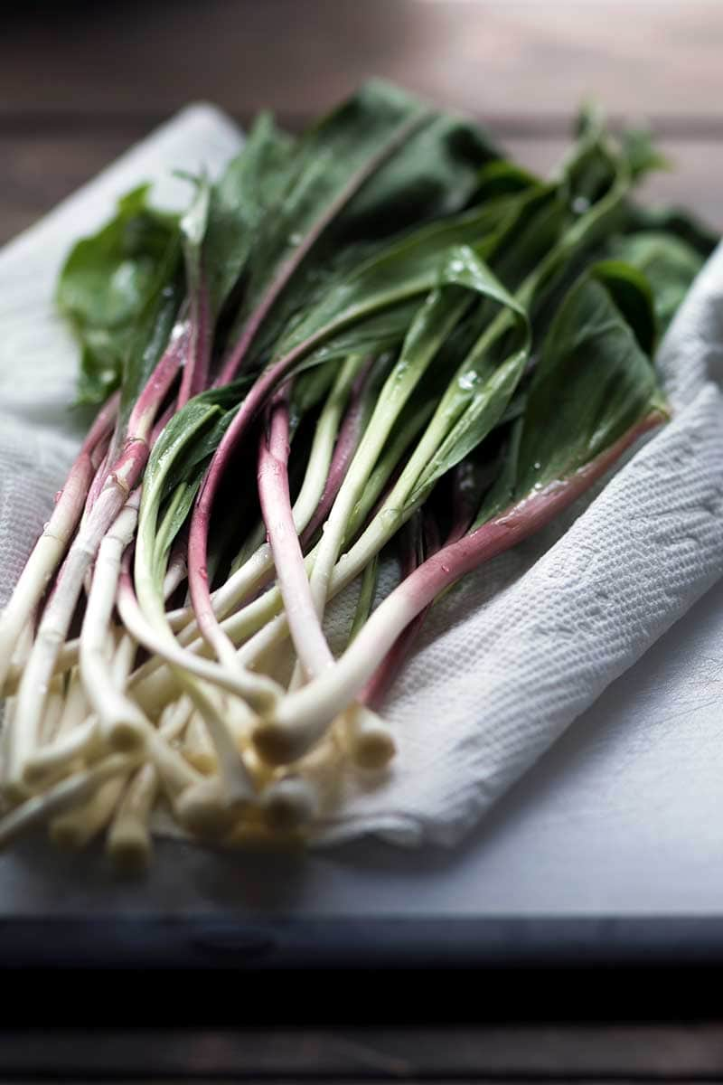 A side angle view of wild ramps