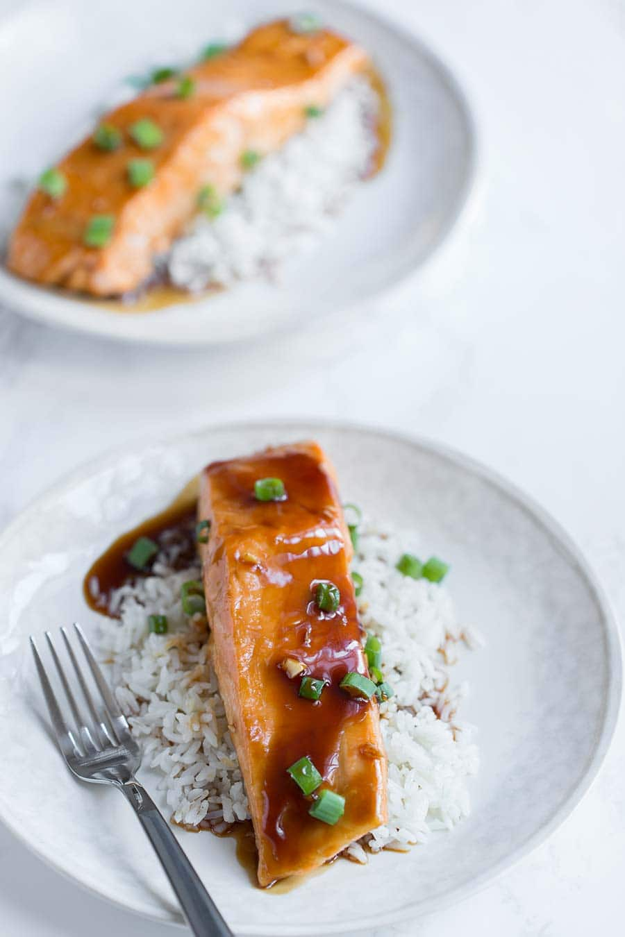 2 pieces of teriyaki salmon served over rice, topped with scallions.
