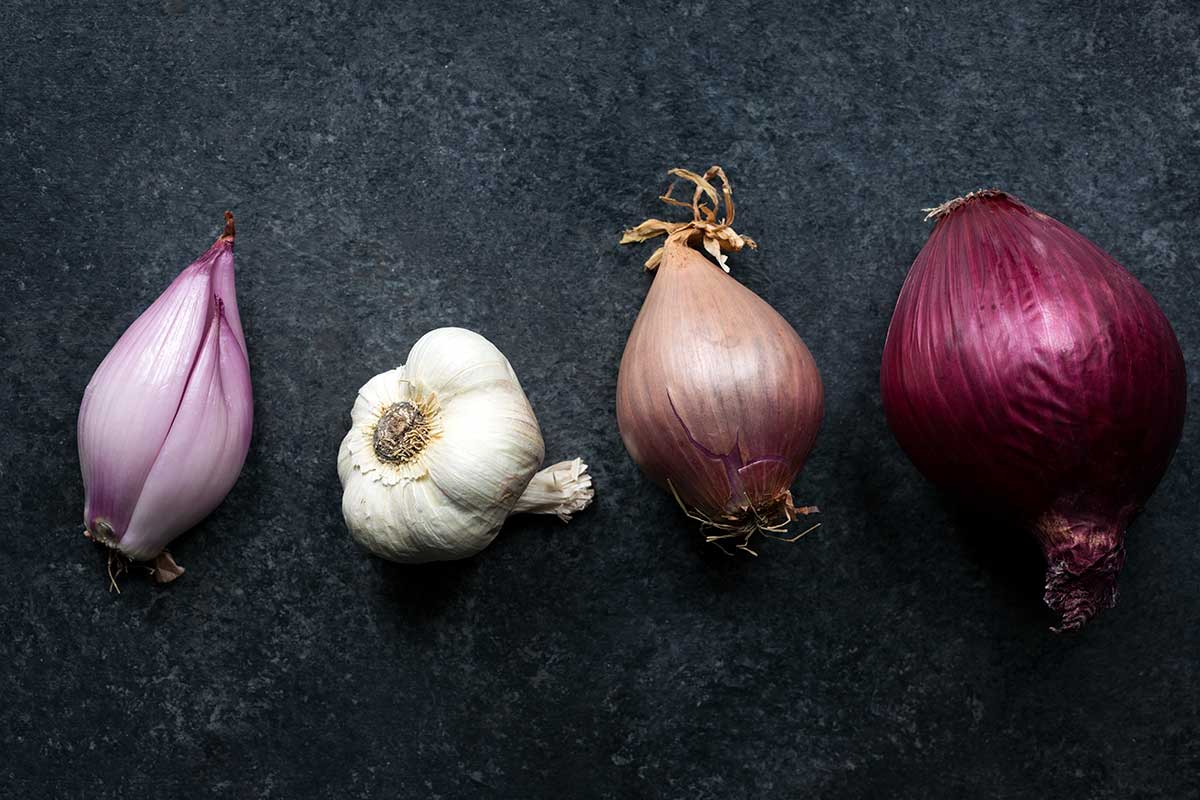 Shallots probably originated in Central or Southwest Asia travelling from there to India and the eastern Mediterranean The name shallot comes from Ashkelon an