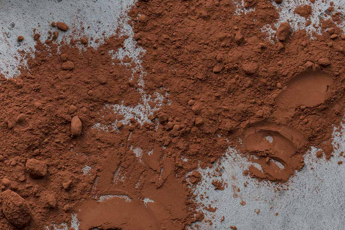 A macro close up of Dutch-process cocoa powder
